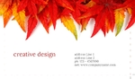 arts&photography-business-card-15-november